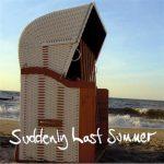 Jimmy Somerville – Suddenly Last Summer